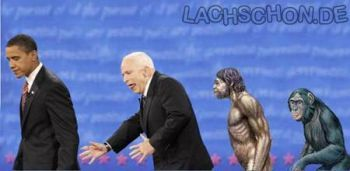 McCain Evolution